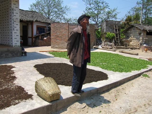 Kung fu master or tea farmer?