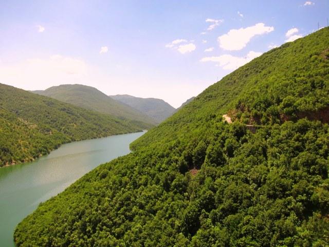Lush reservoir