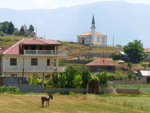 Church, mosque and donkey