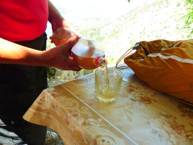 Nettle juice