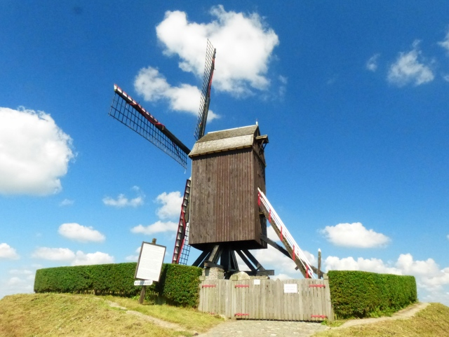 Different kind of windmill